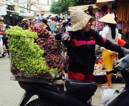 Người trồng nho Ninh Thuận thua lỗ vì hàng Trung Quốc